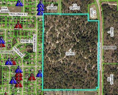 Hernando County Commercial For Sale: 2225 Anderson Snow Road