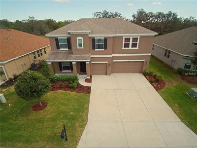 New Port Richey Single Family Home For Sale: 8750 Creedmoor Lane