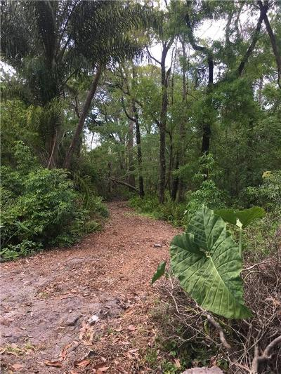 New Port Richey Residential Lots & Land For Sale: 7101 Baillie Drive