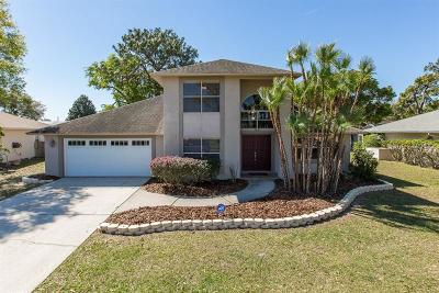 New Port Richey Single Family Home For Sale: 9120 Brooker Drive