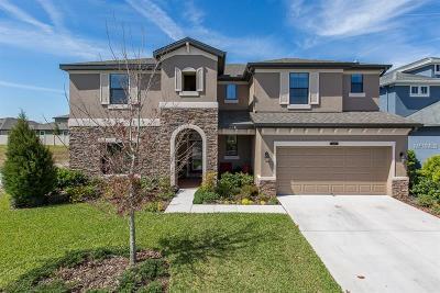 Land O Lakes Single Family Home For Sale: 8229 Mallow Mirror Lane