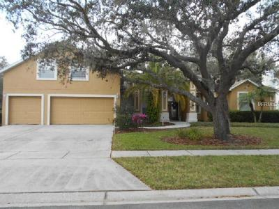 Hernando County, Hillsborough County, Pasco County, Pinellas County Single Family Home For Sale