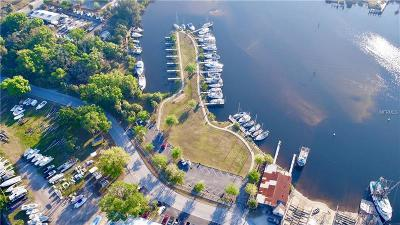 Tarpon Springs Residential Lots & Land For Sale: Island Avenue