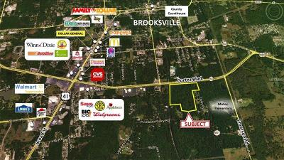 Hernando County Commercial For Sale: 00 Cortez Boulevard