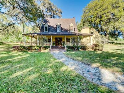 Brooksville Single Family Home For Sale: 26000 Mountain Lake Road