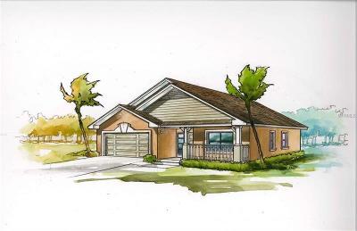 Tarpon Springs Single Family Home For Sale: 0000 Center Avenue
