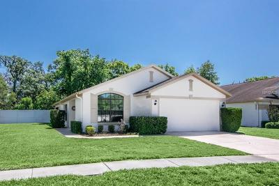 Hudson Single Family Home For Sale: 13526 Bryndlewood Court