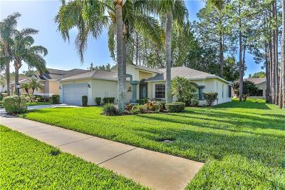 Hernando County, Hillsborough County, Pasco County, Pinellas County Single Family Home For Sale: 11150 Sun Tree Road