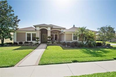 New Port Richey, New Port Richie Single Family Home For Sale: 4334 Anaconda Drive