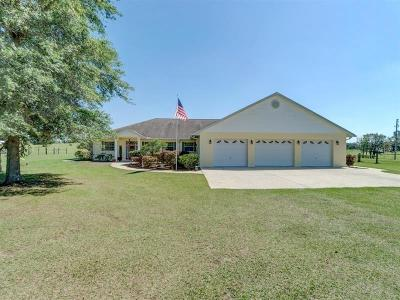 Lake County, Sumter County Single Family Home For Sale: 7439 W C 476