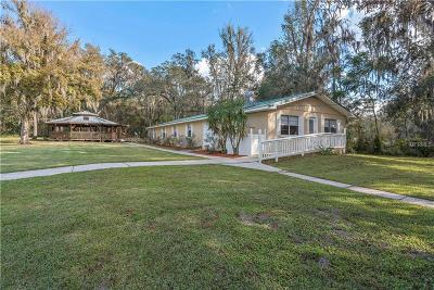 Brooksville Single Family Home For Sale: 15458 Snow Memorial Highway
