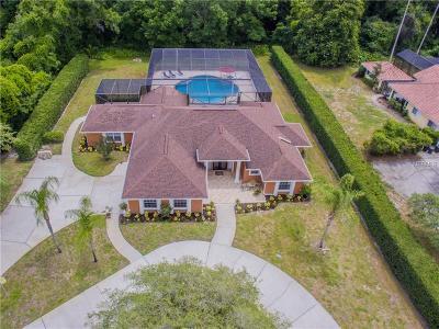 Spring Hill Single Family Home For Sale: 12206 Quail Ridge Drive