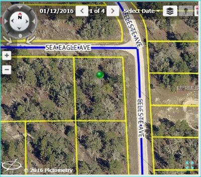 Hernando County, Hillsborough County, Pasco County, Pinellas County Residential Lots & Land For Sale: 0 Sea Eagle Avenue