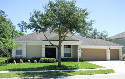 Hudson Single Family Home For Sale: 13704 Bee Tree Court