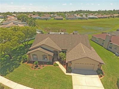Hudson Single Family Home For Sale: 8303 Coral Creek Loop