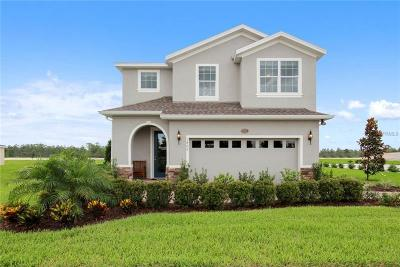 Hillsborough County Single Family Home For Sale: 12211 Blue Pacific Drive