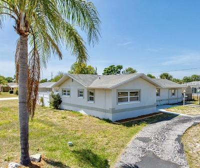Port Richey Single Family Home For Sale: 10537 Hibiscus Drive