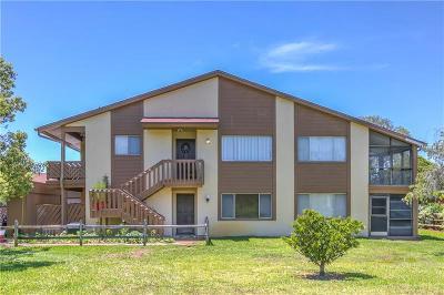 New Port Richey Condo For Sale: 4026 Davit Drive #5