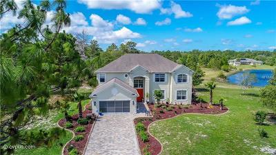 Weeki Wachee Single Family Home For Sale: 11000 Gig Avenue