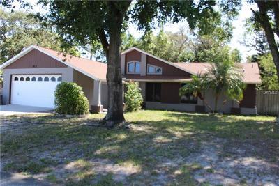 Port Richey Single Family Home For Sale: 9412 Lake Chrise Lane