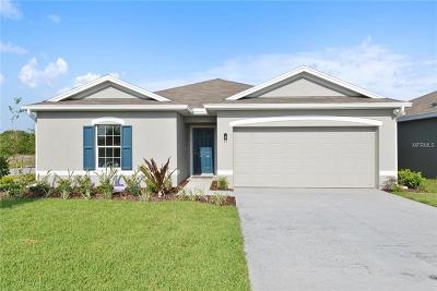 Wimauma Single Family Home For Sale: 14456 Haddon Mist Drive