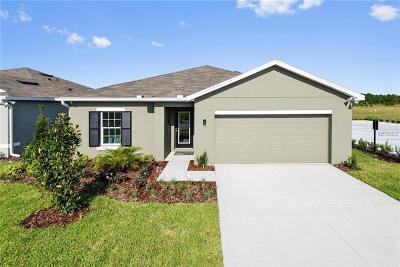 Wimauma Single Family Home For Sale: 14458 Haddon Mist Drive