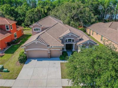 New Port Richey Single Family Home For Sale: 11732 Manistique Way