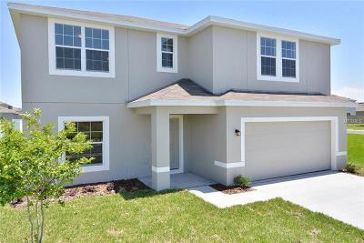 Wimauma Single Family Home For Sale: 14506 Haddon Mist Drive