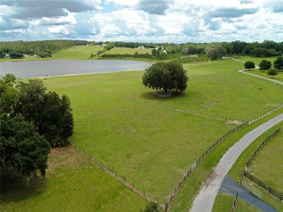 Hernando County, Hillsborough County, Pasco County, Pinellas County Residential Lots & Land For Sale: 34437 Pennacook Drive