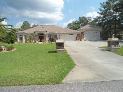 Weeki Wachee Single Family Home For Sale: 10124 Southern Breeze Court