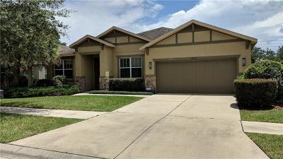 Lithia Single Family Home For Sale: 15715 Starling Water Drive