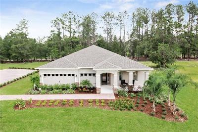 Apopka Single Family Home For Sale: 2327 Palmetum Loop