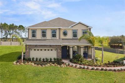 Apopka Single Family Home For Sale: 2368 Palmetum Loop