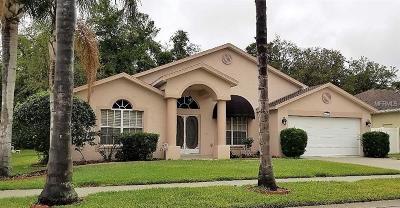 New Port Richey Single Family Home For Sale: 4527 Anaconda Drive