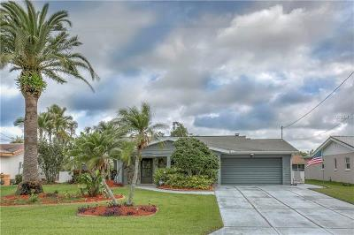 New Port Richey Single Family Home For Sale: 3955 Floramar Terrace
