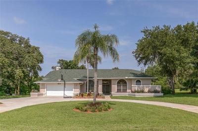 New Port Richey, New Port Richie Single Family Home For Sale: 8809 Skymaster Drive