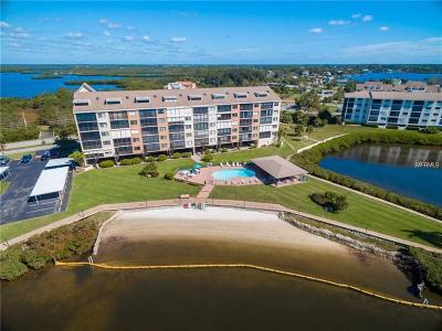 Port Richey Condo For Sale: 4550 Bay Boulevard #1242