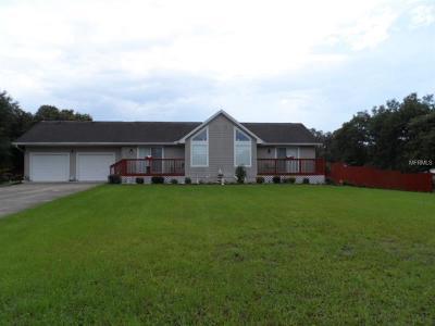 Spring Hill Single Family Home For Sale: 16630 Saguaro Lane