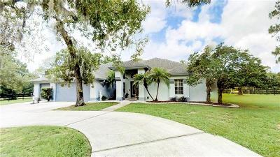 New Port Richey Single Family Home For Sale: 11639 Wild Cat Lane