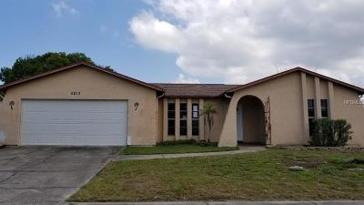 Port Richey Single Family Home For Sale: 8253 Medford Drive