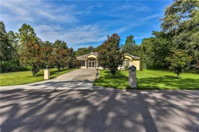 Brooksville Single Family Home For Sale: 12105 Harris Hawk Road
