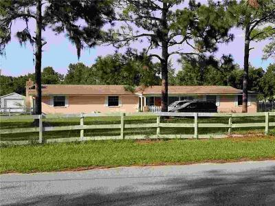New Port Richey, New Port Richie Single Family Home For Sale: 9645 Sunbeam Drive