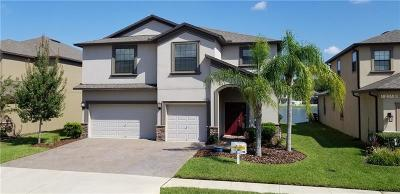 New Port Richey, New Port Richie Single Family Home For Sale: 12375 Eagle Chase Way Way