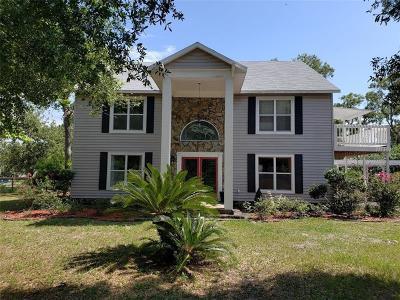 Hudson Single Family Home For Sale: 12343 Phyllis Lane