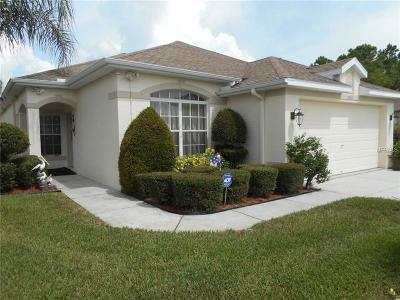 Pasco County, Hernando County Single Family Home For Sale: 2543 Sandy Hill Court