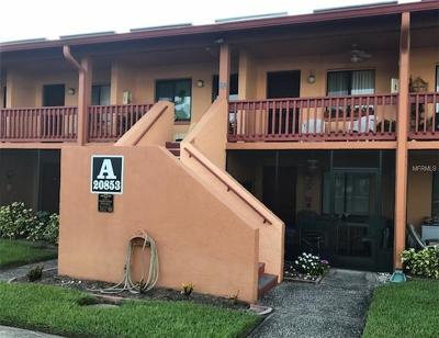 Lutz FL Condo For Sale: $59,900