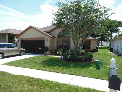 Hudson Single Family Home For Sale: 13702 Schlee Court