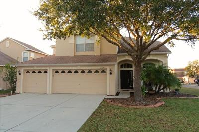 New Port Richey Single Family Home For Sale: 11141 Oyster Bay Circle