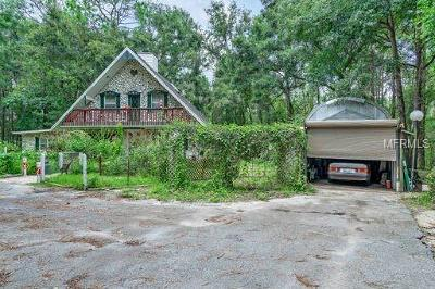 Floral City Single Family Home For Sale: 12296 S Turner Avenue