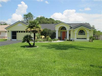 Spring Hill Single Family Home For Sale: 13189 Montego Street